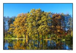 Teich in Frauental